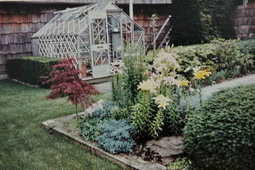 alpine house in 1988