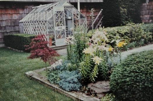 alpine house in 1988