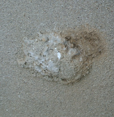 cement thing