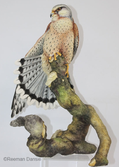KESTREL by Connoisseur of Malvern