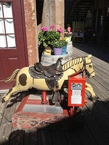 (4) Did you ever ride on one of these?