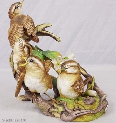 fledgling-wrens